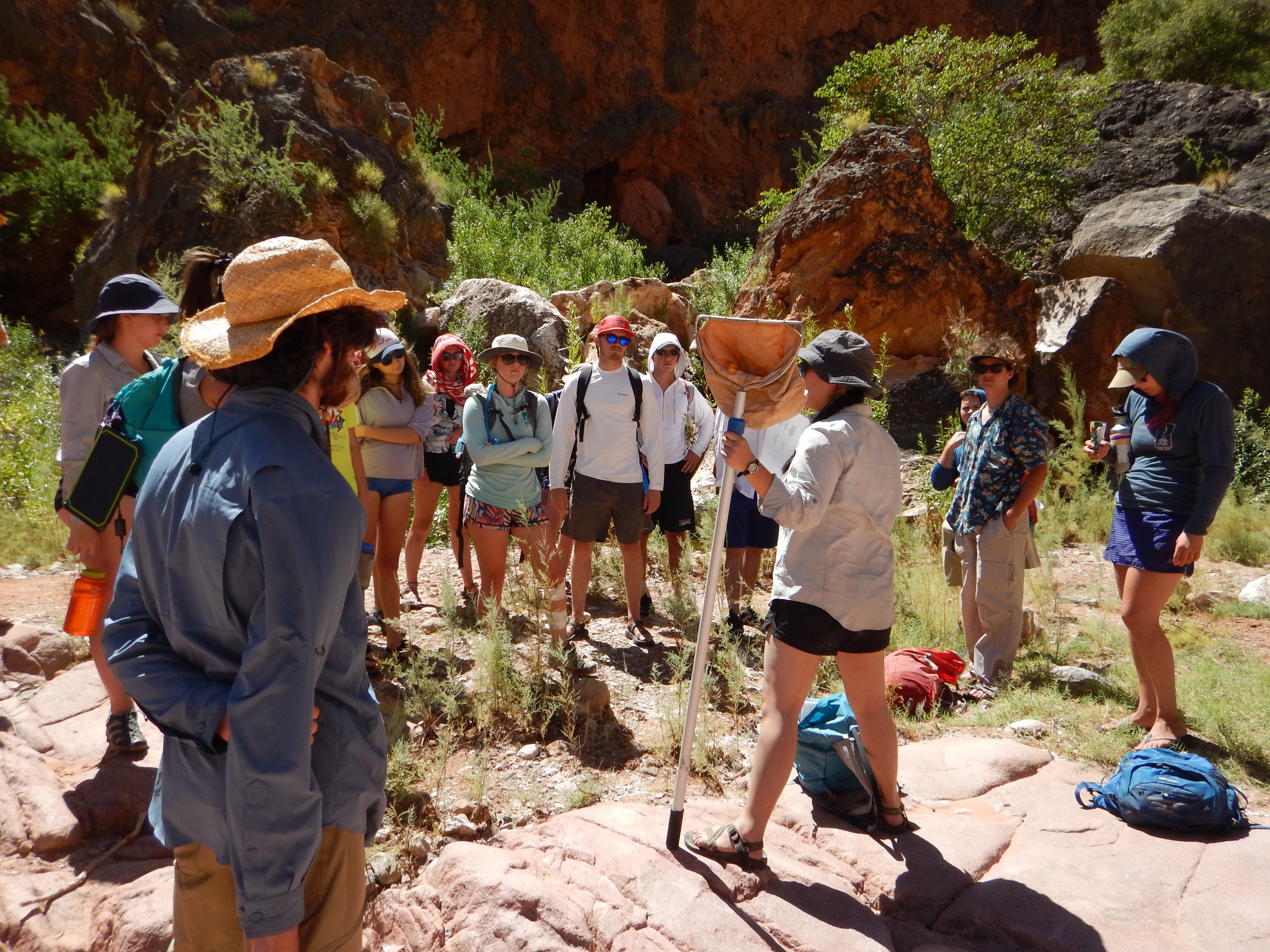 Group of Grand Canyon Youth circle around a scientist holding a net