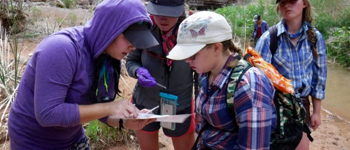 A scientist and Grand Canyon Youth participants take a closer look at a piece of paper